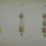 dessins de boucles forme Badine, carnet Charpentier, vers 1870.