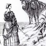 Catalane conduisant une mule...