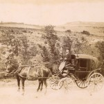 la Jardinierre du docteur, route du Sautel, Pays d'Olmes
