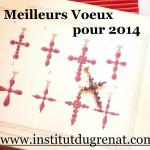 voeux de l'institutdugrenat 2014
